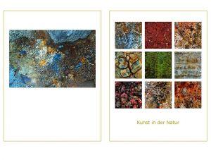 Kunst-in-der-Natur