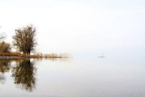 016_Gerhard-Fink